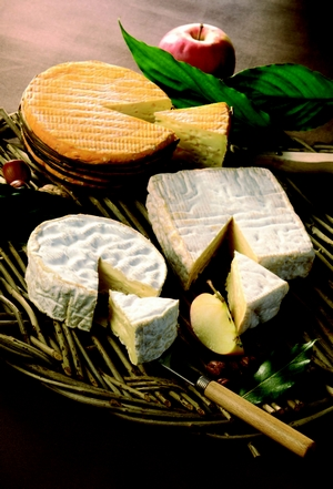 plateau-de-fromages-normands